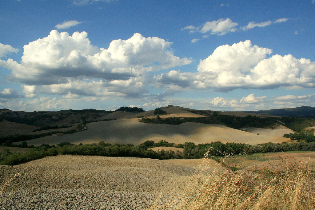 Bike holidays in the Terre di Siena