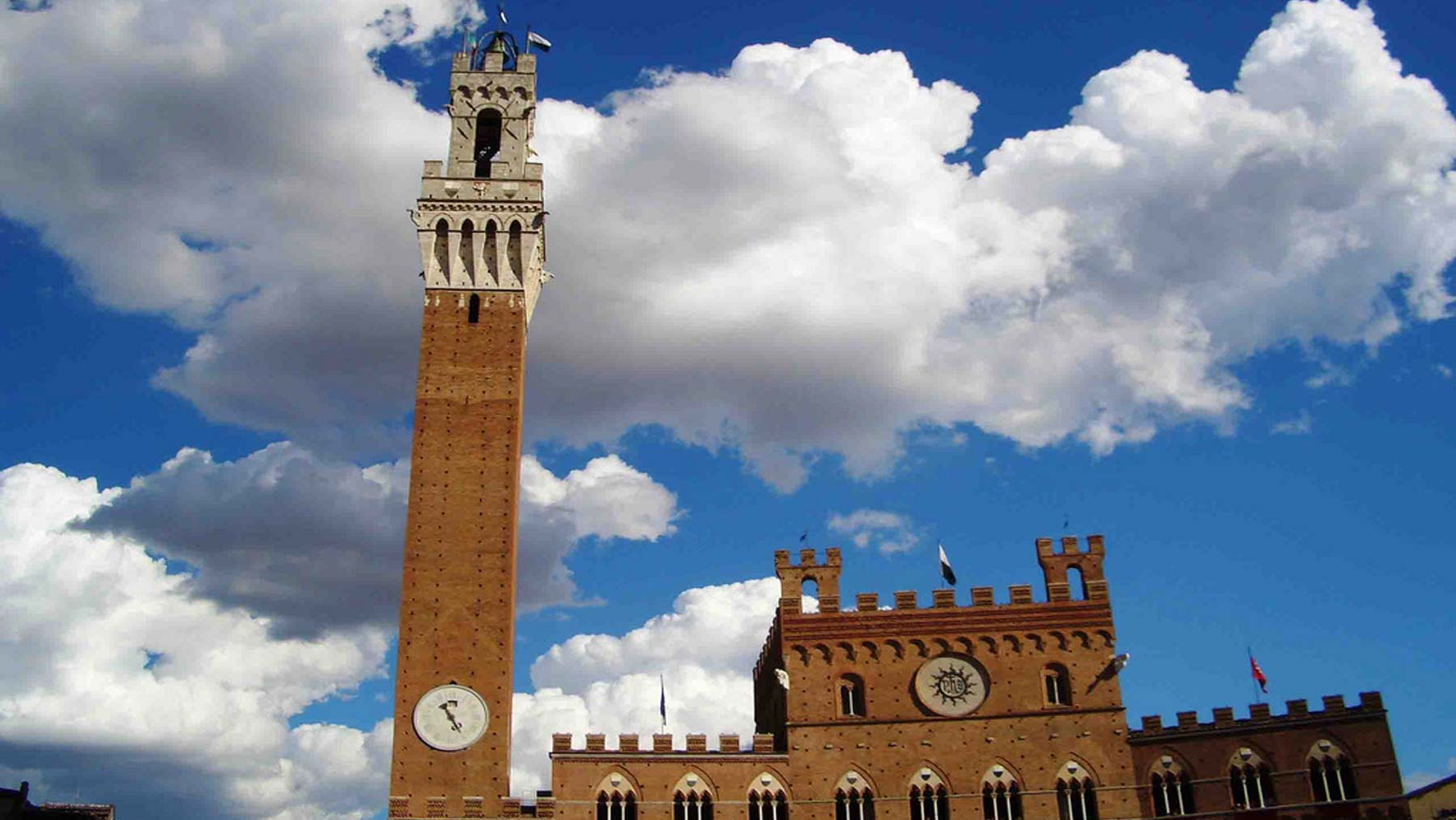 Group guided visits of Siena