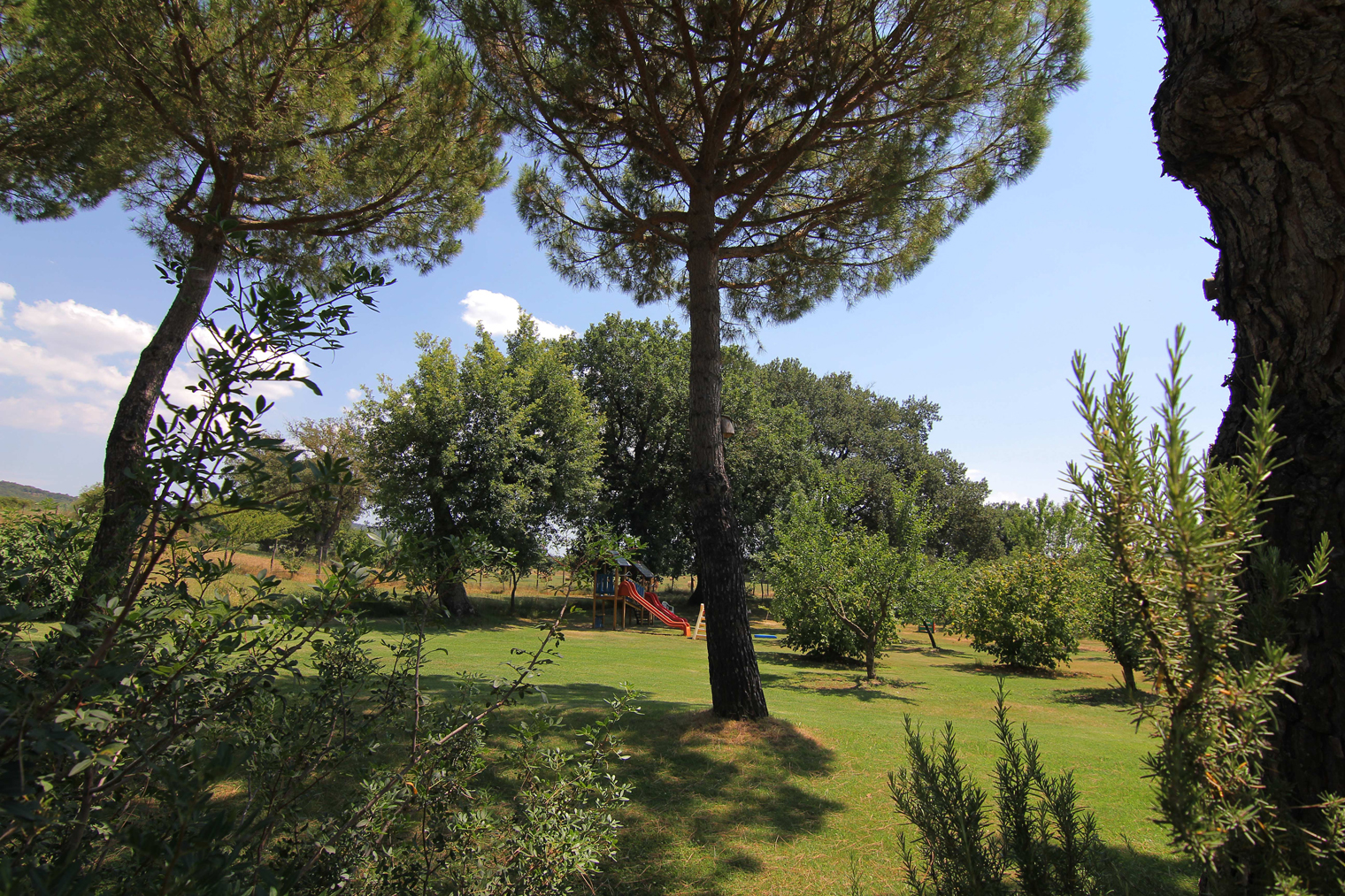 ANYONE WITH CHILDREN - Farm Holiday Il Molinello