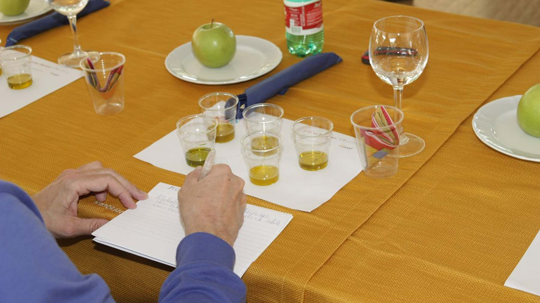 Extra virgin olive oil Terre di Siena tasting course